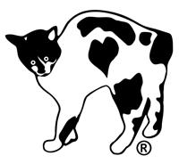 Zoe the cat. Zoe Foundation mascot.