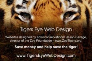 Tigers Eye Advertisement Photo